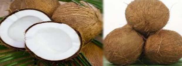 coconut totke